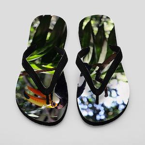 faea2c5ff Brazilian American Flip Flops - CafePress