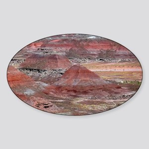 Petrified Forest Sticker (Oval)