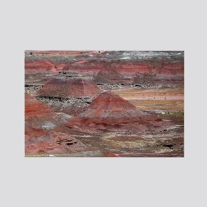 Petrified Forest Rectangle Magnet