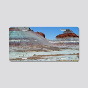 Petrified Forest Aluminum License Plate