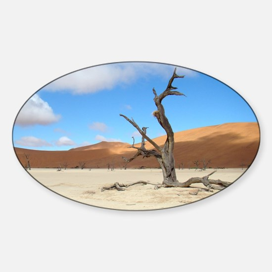 Dead Vlei Sticker (Oval)