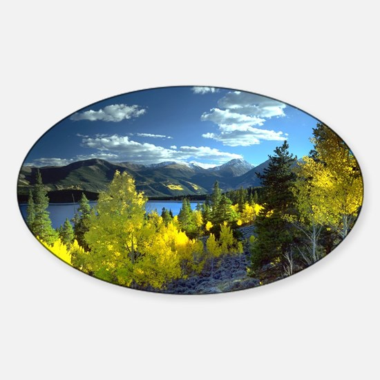 Aspen Sticker (Oval)