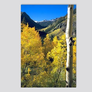 Aspen Postcards (Package of 8)
