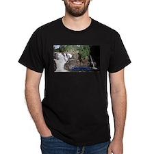Fort Coulonge Waterfalls Dark T-Shirt