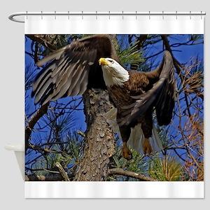 Bald Eagle takes flight Shower Curtain