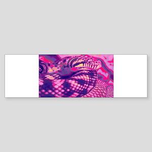 scrub python Bumper Sticker