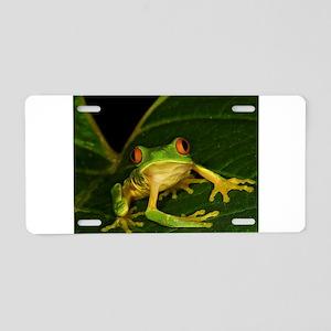 Red-eyed Leaf Frog Aluminum License Plate