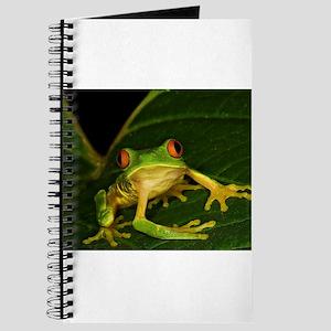 Red-eyed Leaf Frog Journal