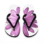 Purple Daisy Flip Flops
