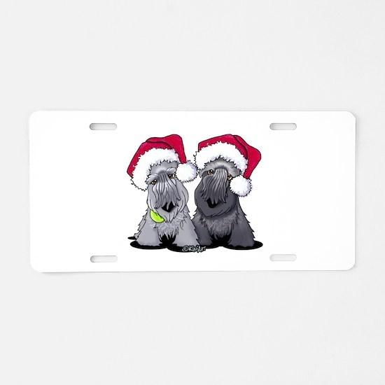 Christmas Cesky Terriers Aluminum License Plate