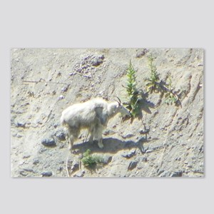 Mountain Goat Postcards (Package of 8)