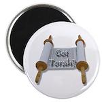 Got Torah? Magnet