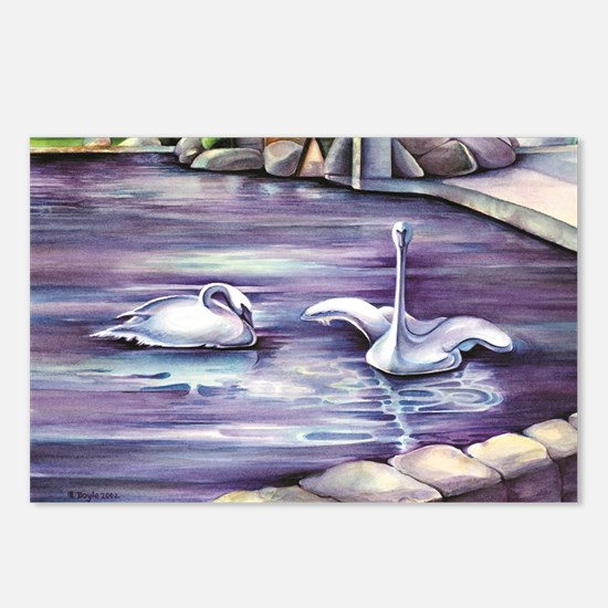 Swans Postcards (Package of 8)