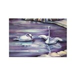 Swans Magnets