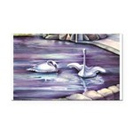 Swans Rectangle Car Magnet