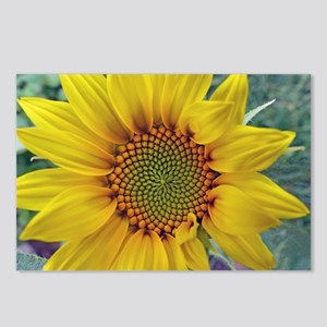 Tiny Sunflower Postcards (Package of 8)