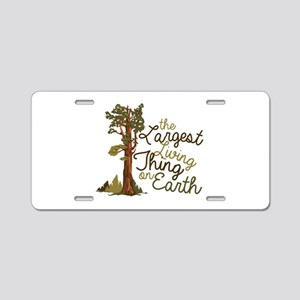 Largest Living Thing Aluminum License Plate