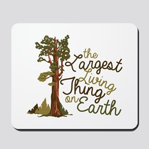 Largest Living Thing Mousepad