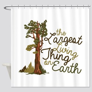 Largest Living Thing Shower Curtain