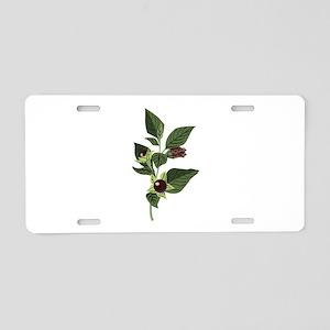 Atropa Belladonna Aluminum License Plate