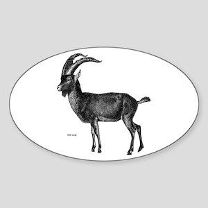 Wild Goat Oval Sticker