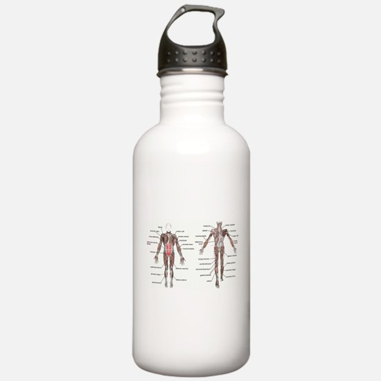Unique Doctor physical therapy mens Water Bottle