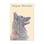 Belgian Tervuren Mini Poster Print