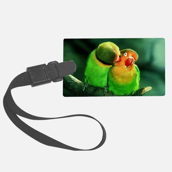 Cool Birds Luggage Tag