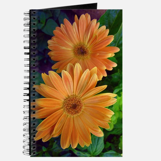 Orange Daisy Journal