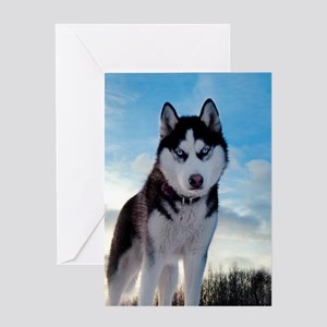Husky Dog Outdoors Greeting Cards