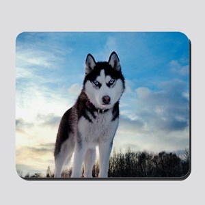 Husky Dog Outdoors Mousepad