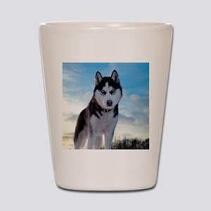 Husky Dog Outdoors Shot Glass