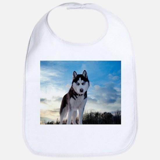 Husky Dog Outdoors Bib