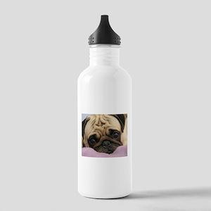 Cute Pug Sports Water Bottle