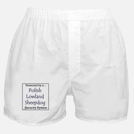 Lowland Security Boxer Shorts