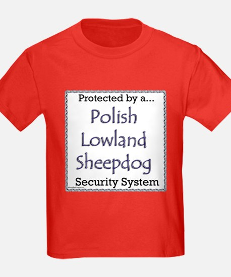 Lowland Security T