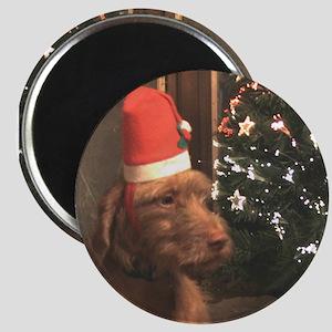 "Christmas WHV 2.25"" Magnet (10 pack)"