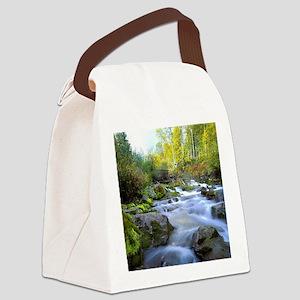 Aspen Waterfall Canvas Lunch Bag