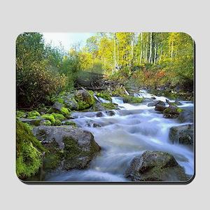 Aspen Waterfall Mousepad