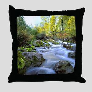 Aspen Waterfall Throw Pillow
