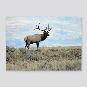 Rocky mountain elk 5'x7'Area Rug