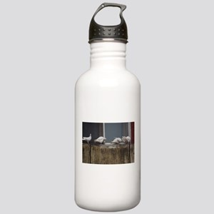 white pigeons Stainless Water Bottle 1.0L