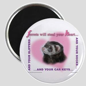 Ferret Thief Magnet