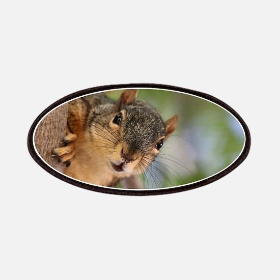Cute squirrel Patch