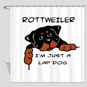 DOGS - ROTTWEILER - LAP DOG Shower Curtain