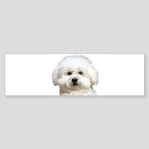 Fifi the Bichon Frise Bumper Sticker