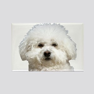 Fifi the Bichon Frise Rectangle Magnet