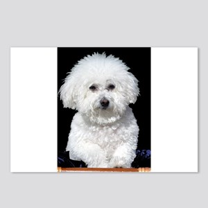 Fifi our Bichon Frise Postcards (Package of 8)