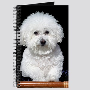 Fifi our Bichon Frise Journal