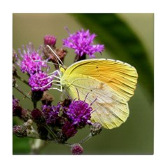 Clouded Sulfur Butterfly on Ironweed Tile Coaster